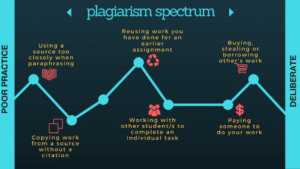 Plagiarism spectrum